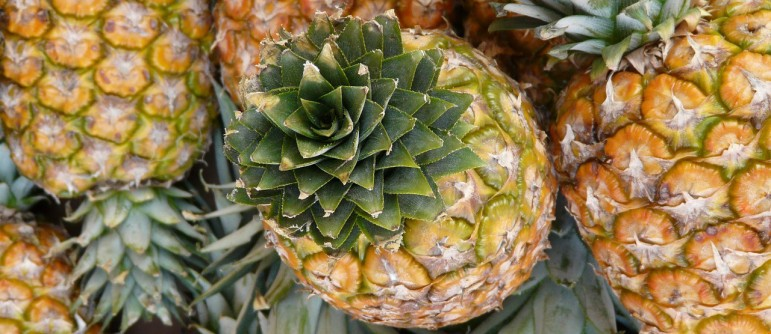 pineapple-5792_1280